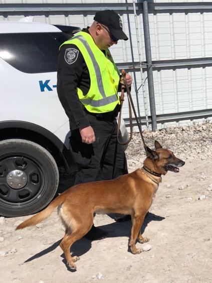 Yard-17-Homeland-Security-K9-3